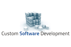 custom-software-development